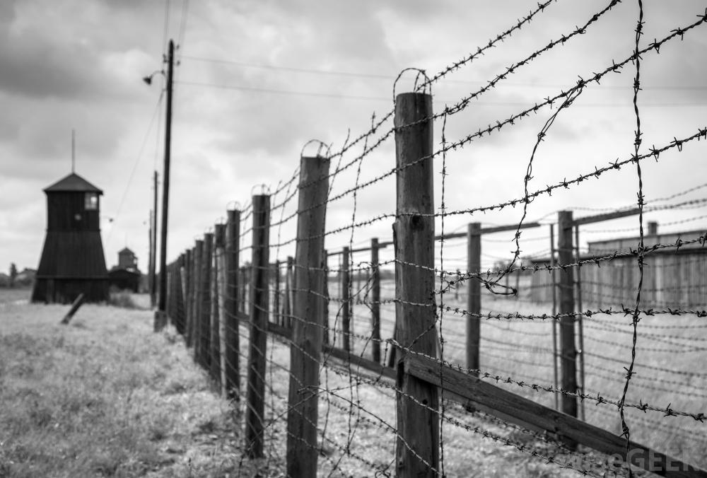 Barbed Wire Does Not Stop Bullets, But Why Are Soldiers Afraid?